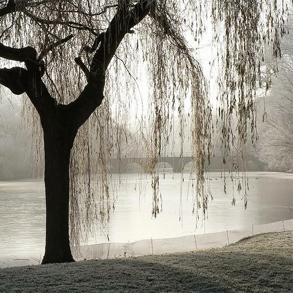 Het Minnewater te Brugge